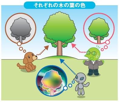 イラスト:それぞれの木の葉の色