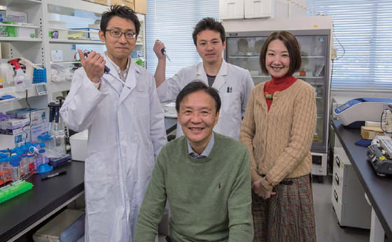 稲垣教授の写真