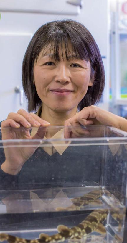 宮﨑准教授の写真