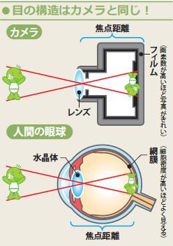 図:目の構造はカメラと同じ