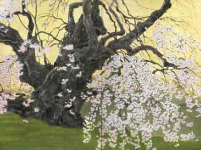 『瀧桜』 240号(194×260.6㎝)