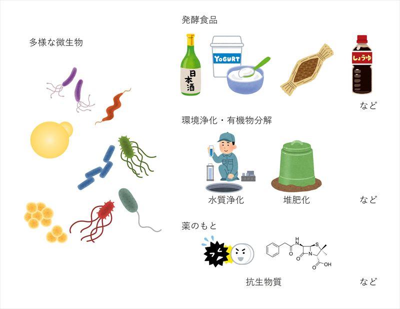 20190805_微生物機能の応用例_R